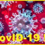 Вторая волна пандемии Covid -19