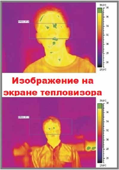 Экран тепловизора