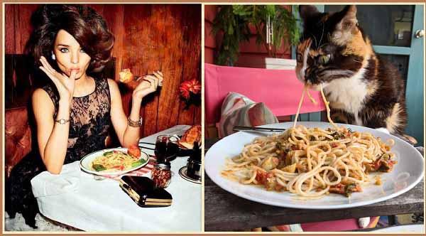 Все любят спагетти